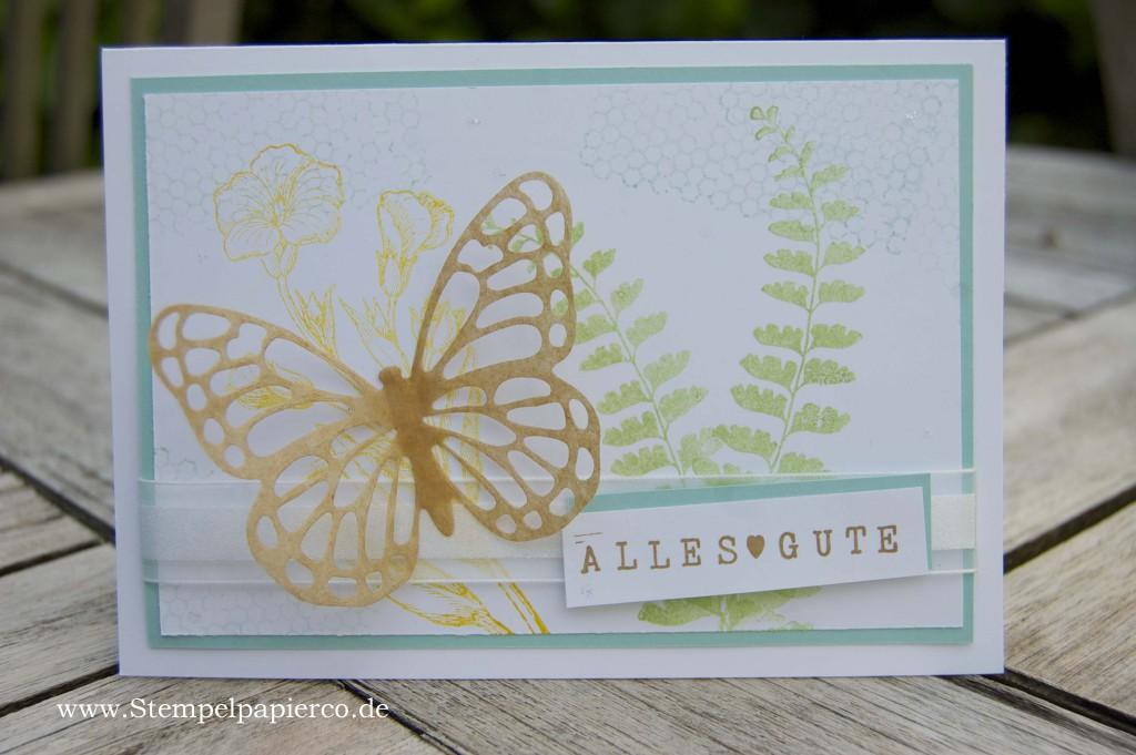 Gratulationskarte mit dem Schmetterlingsgruß von Stampin' Up!