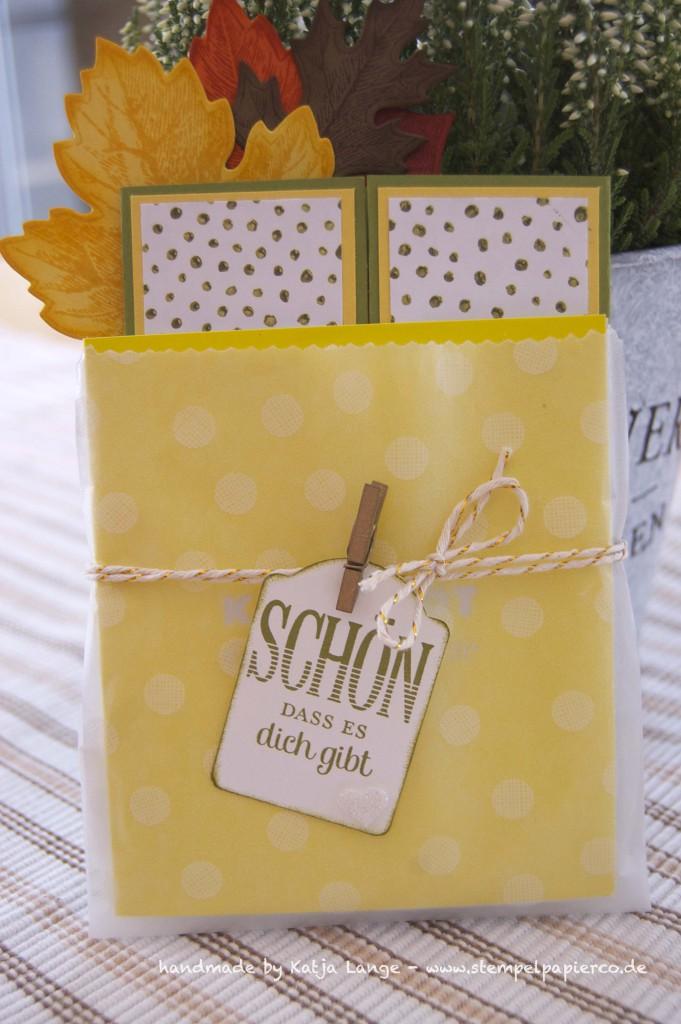 Card in a box im herbstlichem Gewand mit Produkten von Stampin' Up!
