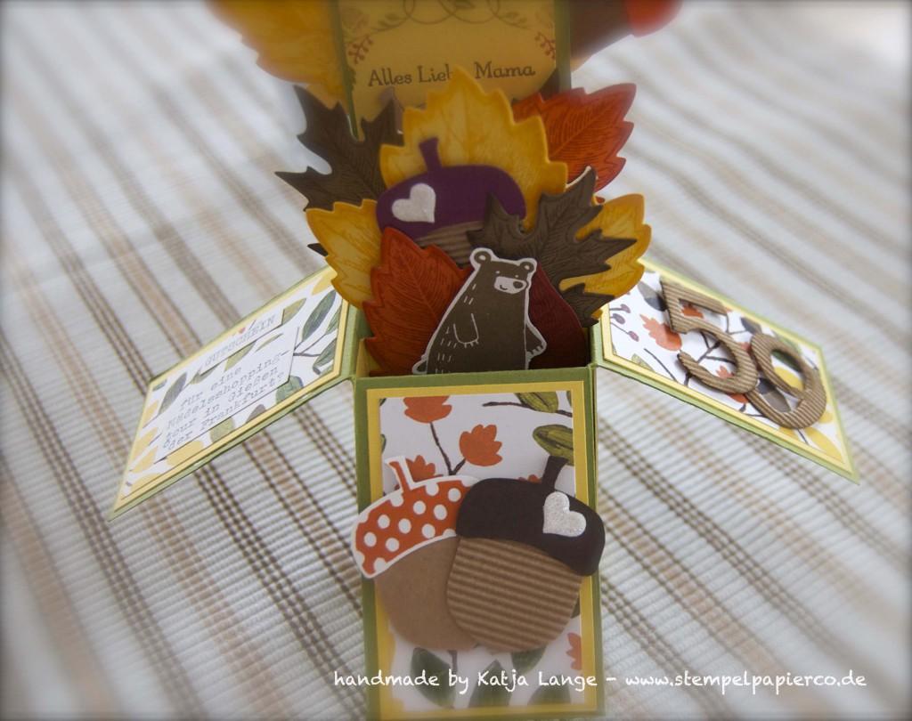 Card in a box in herbstlichem Gewand mit Produkten von Stampin' Up!10