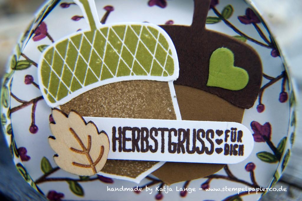 Herbstgruss für Dich mit Produkten von Stampin' Up!2