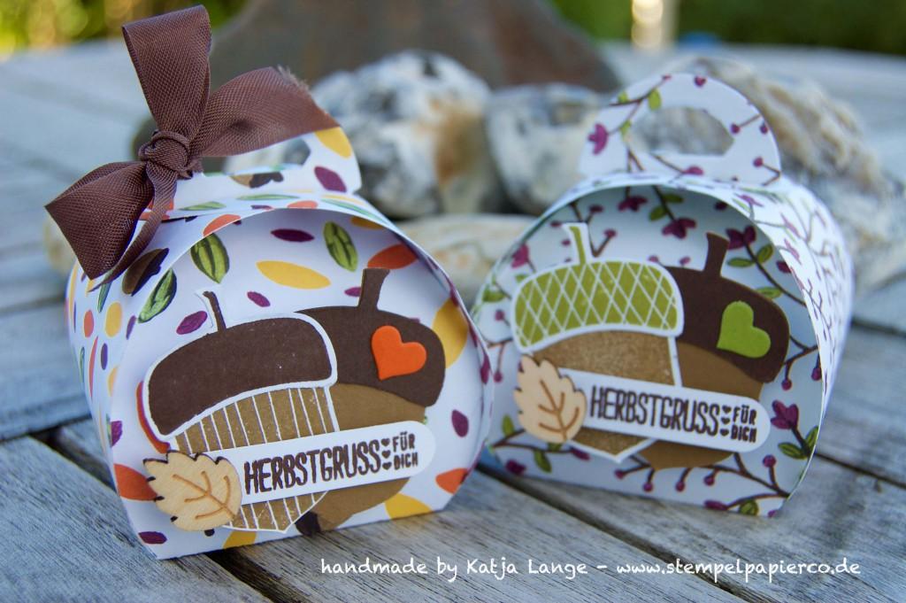 Herbstgruss für Dich mit Produkten von Stampin' Up!4